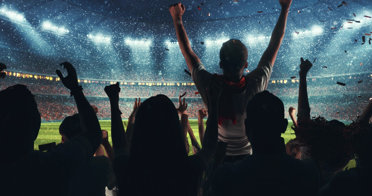 people cheering in a sports stadium